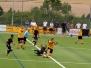 Kaufland Cup 2014